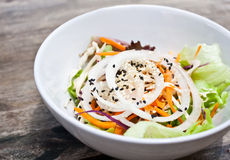 A bowl of fresh vegetable salad (side dish). A bowl of fresh vegetable salad include onion,cabbage,carot,sesame etc Stock Photography