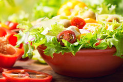Bowl of fresh vegetable salad Stock Images