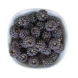 Bowl of fresh wild blackberries isolated on white background, top view Stock Photos