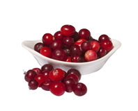 Bowl of fresh wild cranberries, isolated on white Royalty Free Stock Images