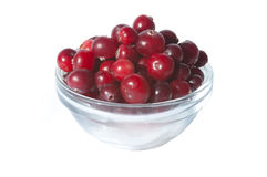 Bowl of fresh wild cranberries, isolated on white Royalty Free Stock Photos