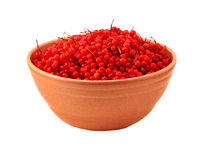 Bowl of freshly picked cranberries Stock Images