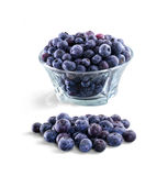 Bowl of frozen domestic blueberries isolated on white background Royalty Free Stock Image