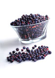Bowl of frozen wild blueberries isolated on white background Royalty Free Stock Images