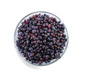 Bowl of frozen wild blueberries isolated on white background Stock Images