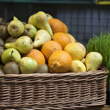 Bowl of Fruit Apples Pears and Oranges Royalty Free Stock Photography