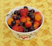 Bowl of fruit, southern Bohemia. Czech Republic Stock Photos