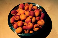 bowl full of apricots from France prepared for conserves Royalty Free Stock Photos
