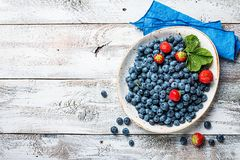 Bowl full of blueberries stock photos