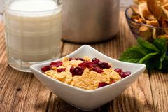 Bowl full of cornflakes with cranberries Royalty Free Stock Images