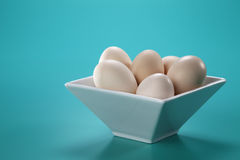 Bowl full of eggs Stock Photos