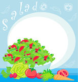 bowl full of fresh vegetable salad Royalty Free Stock Images