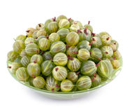 Bowl full of gooseberry isolated on white Stock Images