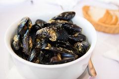 Bowl full of mussels with bread on the side Stock Images