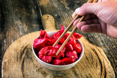 Bowl full of pungent peppers bhut jolokia Royalty Free Stock Image
