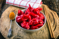Bowl full of pungent peppers bhut jolokia Royalty Free Stock Photos