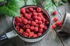 Bowl of raspberries and rustic mug with ripe scattered berries. Top view. Royalty Free Stock Images
