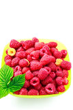 Bowl full of ripe raspberries isolated on white background. Royalty Free Stock Image