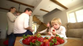 Bowl full of ripe strawberries and blurred family members eat berries. Handheld. Bowl full of red ripe strawberries and blurred family members eating healthy stock footage