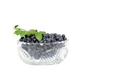 Bowl full whortleberries and green leaves. Stock Photography