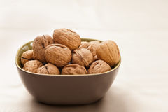 Bowl of giant organic walnuts. The background is beige Stock Image