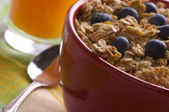 Bowl of Granola and Blueberries Stock Photography