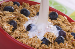 Bowl of Granola and Blueberries and Milk stock photography