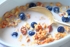 Bowl of granola and blueberries Stock Photo