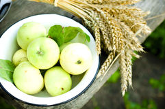Bowl of green apples Stock Images