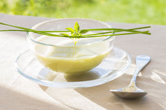 Bowl of green Gaspacho with basil and chives Stock Image