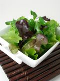 A bowl of green salad 2. Green salad in a white china bowl stock images