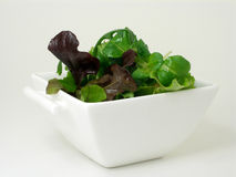 A bowl of green salad 4. Green salad in a white china bowl royalty free stock photos