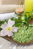 Bowl of green sea salt Royalty Free Stock Photo