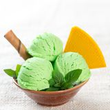 Pistachio ice cream bowl Stock Image