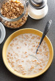 Bowl of healthy muesli and milk Stock Image