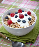 Muesli. Bowl of healthy muesli with yogurt and fresh berries Royalty Free Stock Images