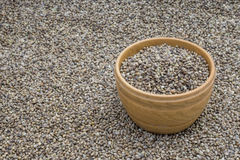 Bowl with hemp seeds Stock Photography