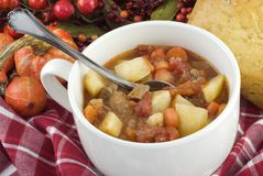 Bowl of Homemade Beef Stew Royalty Free Stock Photos