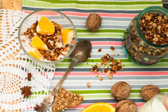 Bowl of homemade granola and oranges for breakfast Stock Images