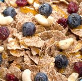 Bowl of homemade granola with yogurt and fresh berries on wooden stock photography