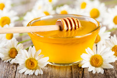 Bowl of honey with daisy flowers Stock Images