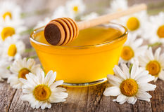 Bowl of honey with daisy flowers Royalty Free Stock Image