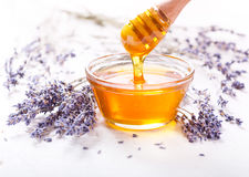 Bowl of honey and lavender flowers Stock Photos