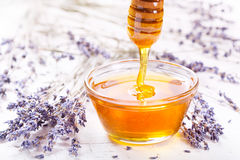 Bowl of honey and lavender flowers Royalty Free Stock Image