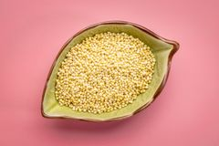 Bowl of hulled millet grain Royalty Free Stock Image