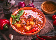 Bowl of hungarian goulash and ingredients around royalty free stock photo