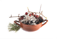 Bowl with ice and a branch with berries of hawthorn Stock Photos
