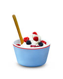 Bowl with ice cream and berries Stock Photography