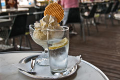 Bowl of ice cream and cookie Royalty Free Stock Image