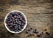 Bowl of juniper berries Stock Images